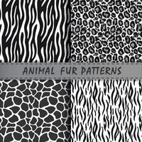Vektor sömlösa mönster som fastställs med djurhår textur. Upprepande djurbakgrunder för textildesign, scrapbooking, förpackningspapper. Vektor djurtryck.