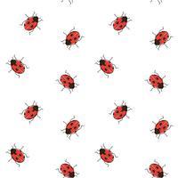 Ladybug sömlöst mönster. Nyckelpiga repeterande bakgrund för tapeter, omslag
