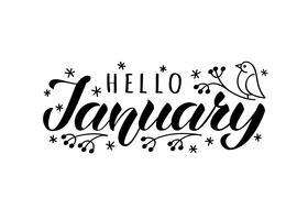 Hej januari handritat brevkort med doodle snowlakes och fågel. Inspirerande vintercitationstecken. Motivational print för inbjudan eller hälsningskort, broschyrer, affisch, t-shirts, muggar.