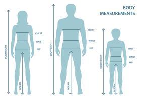 Silhouttes av man, kvinnor och pojke i full längd med mätlinjer av kroppsparametrar. Mått på män, kvinnor och barnstorlekar. Människokroppsmätningar och proportioner.