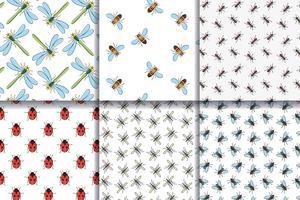 Insekter sömlös mönster samling. vektor