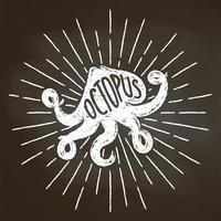 Bläckfisk krita silhoutte med solstrålar på svarta tavlan. Bra för skaldjur restaurang meny design, inredning, logotyper eller affischer. vektor