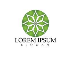 Stern Logo Vorlage vektor