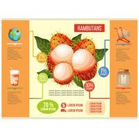 Rambutans Info Grafik Vektor