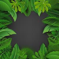 Bakgrund av tropiska löv. Lämplig för naturkoncept, semester och sommarlov. Vektor illustration