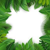 Hintergrund mit Textraum von tropischen Blättern. Geeignet für Naturkonzept, Urlaub und Sommerurlaub. Vektor-Illustration