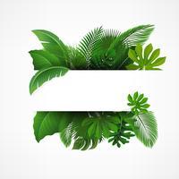 Signera med textutrymme av tropiska löv. Lämplig för naturkoncept, semester och sommarlov. Vektor illustration