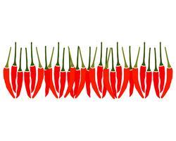Chili vektor mall logotyp och symbol