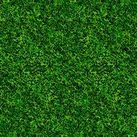 grüne Fußball Gras Textur vektor