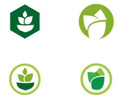 Einzigartiges grünes Vektorbild der Landwirtschaftsgeschäftslogoschablone vektor