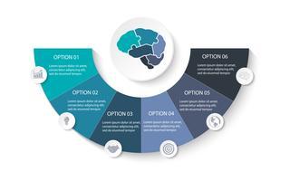 Anatomi av hjärnpussel delar för presentation företags infografisk mall med 6 alternativ, process eller steg. Moderna layout grafiska element design. Vektor illustration.