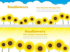 Satz nahtloser Hintergrund des Vektors zwei mit Sonnenblumen und Textraum. vektor