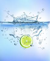 Das Frischgemüse, das in blaues klares Wasserspritzen spritzt, lokalisierte gesundes Lebensmitteldiät-Frischekonzept weißen Hintergrund. Realistische Vektor-Illustration.