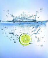 färska grönsaker stänk i blå klart vatten stänk hälsosam kost diet friskhet koncept isolerad vit bakgrund. Realistisk Vektorillustration.