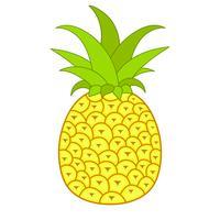 Sommerfrüchte für einen gesunden Lebensstil. Ananas-Frucht. Vektor-Illustrations-Karikatur-flache Ikone lokalisiert