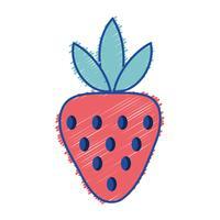 revet utsökt jordgubbe ekologisk fruktmat vektor