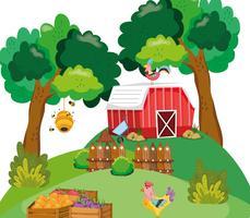 Vackra gårdsbilder vektor