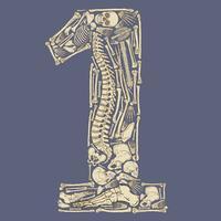 Skelettformad nummer ett vektor