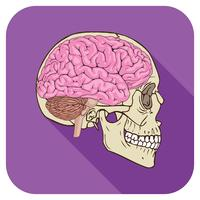 Gehirnsymbol Lila vektor