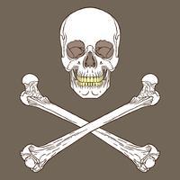 Piratskylt Brun vektor