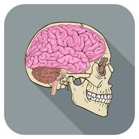 Brainiac Icon Grau vektor