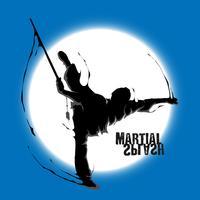 Kampfkunst Spritzen Wushu