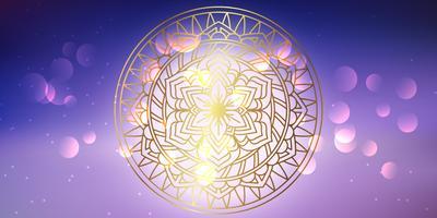 Dekorativ mandala banner vektor