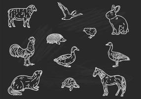 Kreide Drawn Tiere Vektor Set