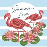 flamingo fågelrosa sommarvektor