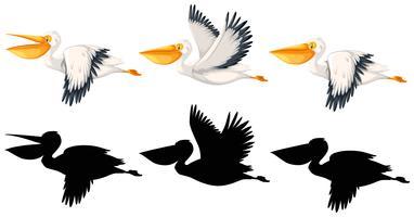 Uppsättning av pelikan karaktär vektor