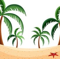 En strandnaturbild