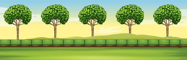 Scen med träd och fält