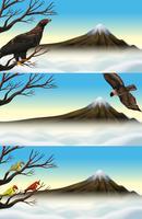 Wildvögel auf dem Ast