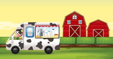 Kuh, die Milch-LKW auf dem Bauernhof fährt