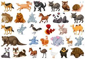 Uppsättning av djur karaktär