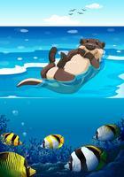 Seeotter, der im Meer schwimmt vektor