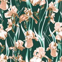 Wildflower Iris Blumenmuster. Vollständiger Name der Pflanze Iris. Lachsirisblume für Hintergrund, Beschaffenheit, Verpackungsmuster, Rahmen oder Grenze.