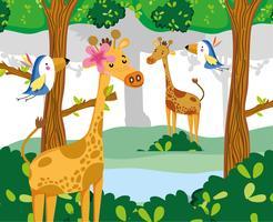 Niedliche wild lebende Tiere vektor