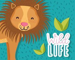 Niedlicher Löwe-Cartoon der wild lebenden Tiere vektor