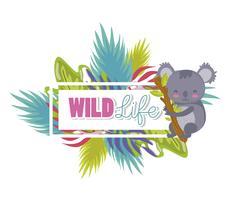 Söta vilda djur tecknade filmer