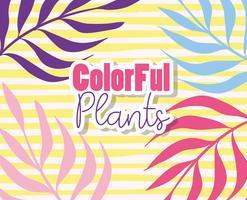 Färgglada växter design