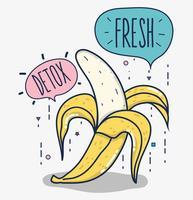 Detox och färsk frukt vektor