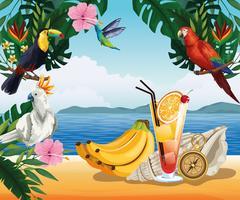 Sommarsemester och strandkarikärer