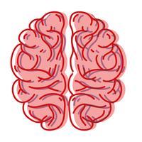 menschliche Gehirn Anatomie kreativ und Intellekt