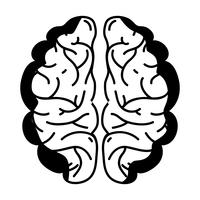 kontur mänskliga hjärnanatomi till kreativa och intellekt vektor