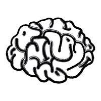 Figur menschlichen Gehirns Anatomie kreativ und Intellekt