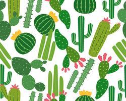 Das nahtlose Muster vieler Kakteen, die auf weißem Hintergrund lokalisiert werden - Vector Illustration