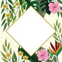 Sommar diamant ram med tropiska blommor vektor