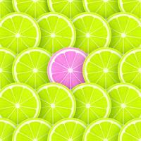Pop Limette Scheiben Vektor Hintergrund
