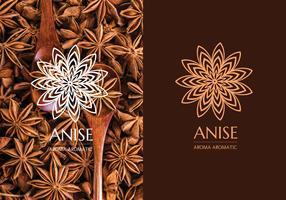 Anis-Logo-Design